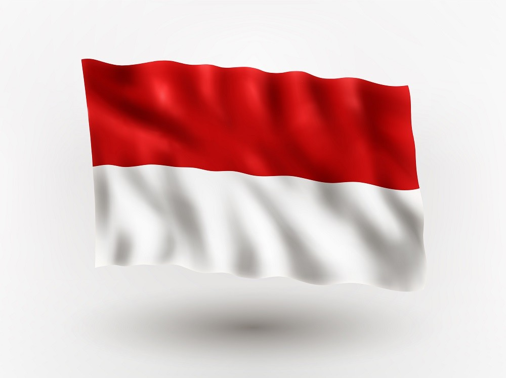 Implications of the New Regulation on the Mandatory Use of Indonesian Language to Businesses